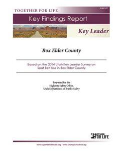 Box Elder Key Leader Key Findings Report