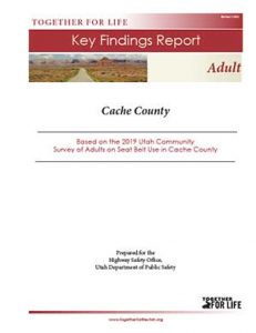 Adult Survey Key Findings Report