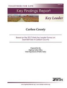 Carbon Key Leader Key Findings Report