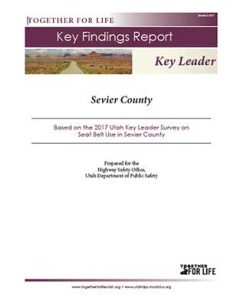 Sevier Key Leader Key Findings Report