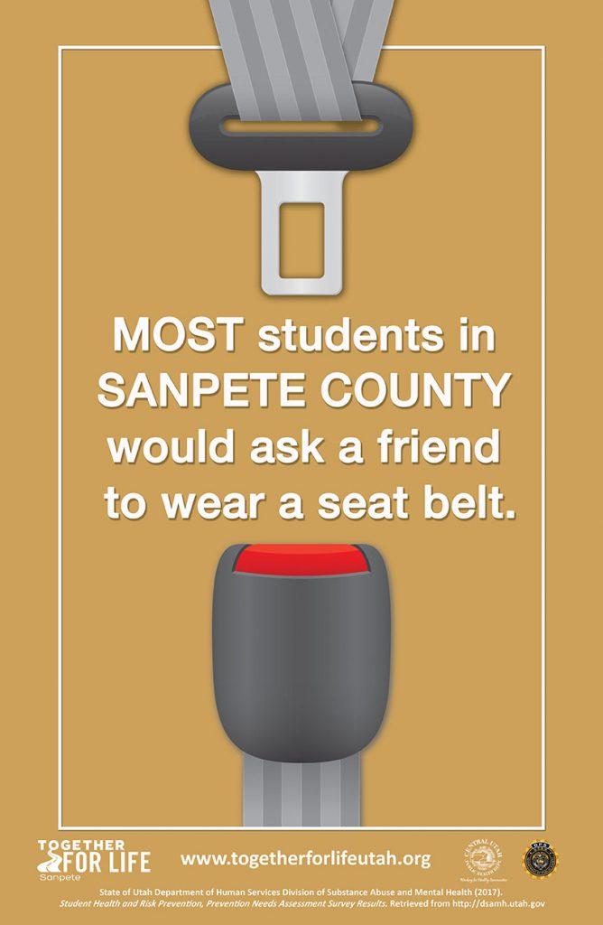 School/Student Poster 2 Sanpete