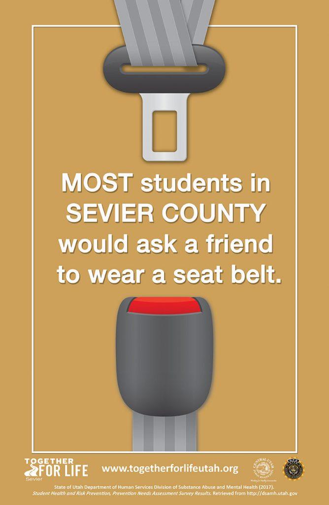School/Student Poster 2 Sevier